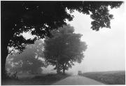 Foggy Morning, New Wilmington, Pennsylvania