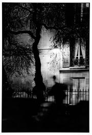 Night In the Marais